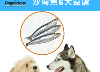 dog-nutrients-sardines